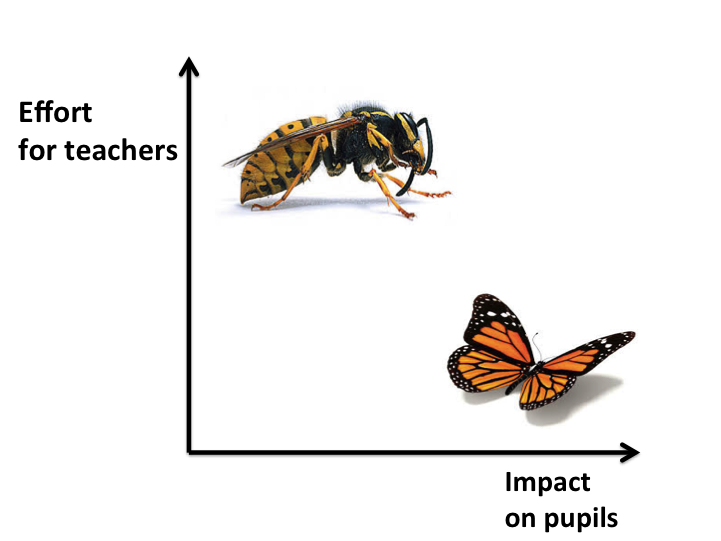hornets and butterflies how to reduce workload joe kirby s blog